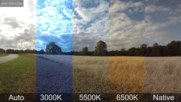 photography basics 5 what is white balance what photography gear